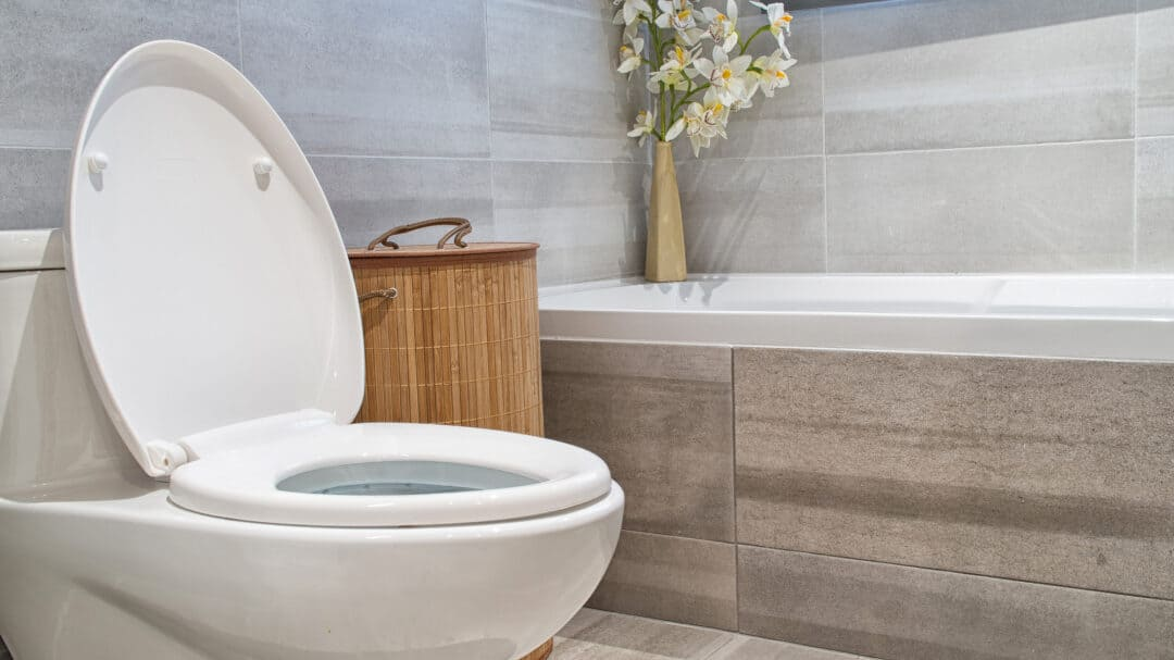 The Different Types of Toilets, Explained